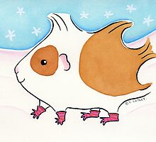Guinea-pig With Stripy Socks in the Snow by zoel