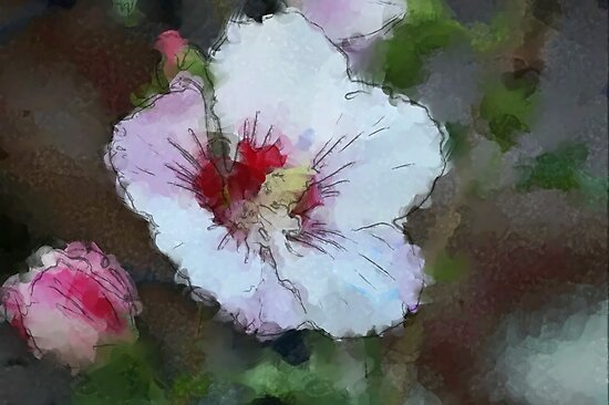 *Hibiscus Impression* by Darlene Lankford Honeycutt