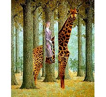 Giraffe In Forest Photographic Print