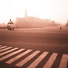 Delhi Parliament Crossing by Giles Freeman