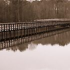 Wildlife Sanctuary Boardwalk in Sepia by CatKV