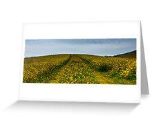 Wildflower Track Greeting Card