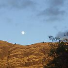 the Moon by Day over Waianae by John Henry Martin