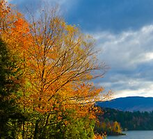 Autumn in Vermont by Murph2010