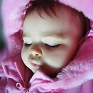 Sleeping Beauty by Ann Persse