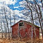 Shed Of One by Keri Harrish