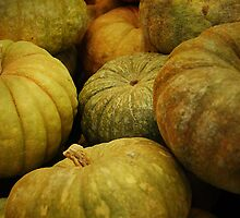 Pumpkins by Kate Fortune