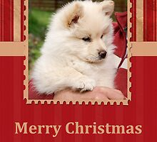Christmas Card No 12 by FLCV