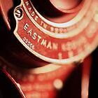 Red Camera by Amanda Roberts
