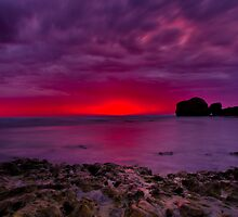 """""""Rocky Point Dawning"""" by Phil Thomson IPA"""