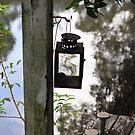 Jetty Lamp by aussiebushstick