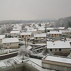Winter in Migennes - nov 2010  by Caroline  SAUVAGEOT
