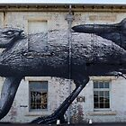 roa on cockatoo island by Steven Guy