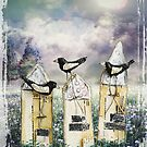 Bird Houses by Rookwood Studio ©