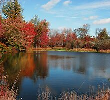 Kimball Farm Pond by copper4000