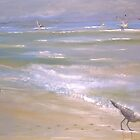 Wind Surfer by Thomas J Norbeck