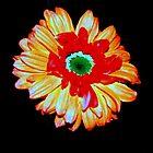 Fantasy Flower II by ckredman031762
