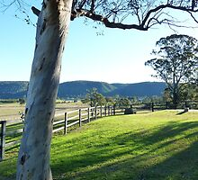 Castlereagh countryside by DashTravels