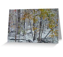 The October Blizzard Begins Greeting Card