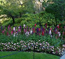 Colorful border in the Sunken Garden - Butchart by MischaC