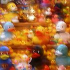 A Ducky World: photo calendar by Sammy Nuttall
