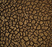 Baked Earth by David Mellor