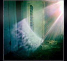 Morning Light by thejourneysofar