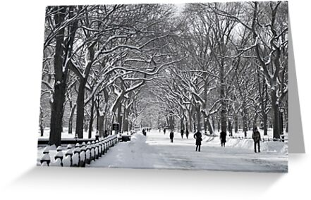 Central Park Mall Winter Scene by andykazie