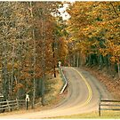 Entrance Road by LocustFurnace