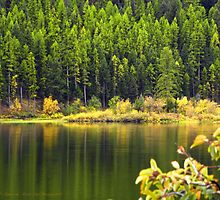 Salmon Lake Reflections by rocamiadesign