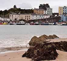 Tenby Harbour Pembrokeshire 9 by Steve Purnell