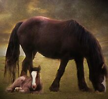 Mother and Child by Carol Bleasdale