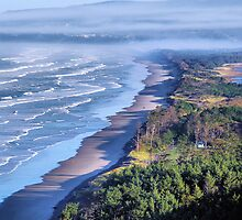 Oregon's Pacific Coastline  by Don Siebel