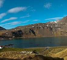 Grytviken Panorama by Craig Goldsmith