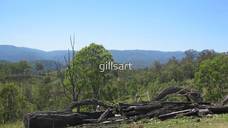 Northern New South Wales ....Hinterland views by gillsart