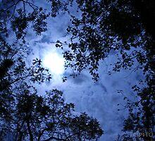 Moonshine by TophuPhoto