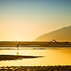 Jabiru on a Hazy Morning by PhotoByTrace