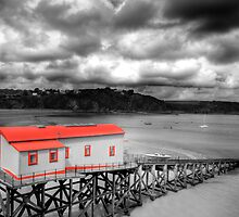 Tenby Lifeboat House Colour Pop 2 by Steve Purnell
