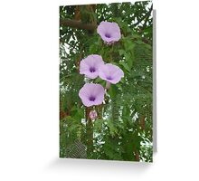 Trumpeting to the morning sun Greeting Card