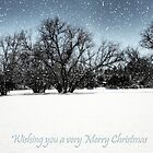 Wishing you a very Merry Christmas  by Saija  Lehtonen
