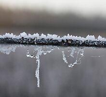 Frosty Wire by Ubernoobz