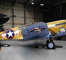 Curtiss P-40 by Andy Jordan