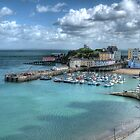 Tenby Harbour Pembrokeshire 14 by Steve Purnell