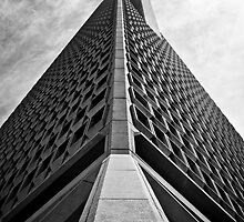 Trans America Building - San Francisco, CA by Topher Gentry