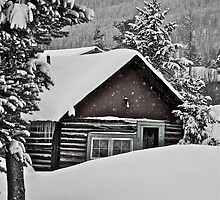 January - Frisco cabin. by bberwyn