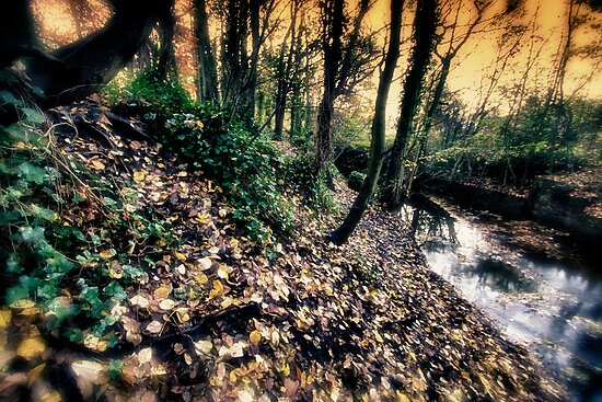 a tale from the riverbank..a childhood remembered... by Russ Styles