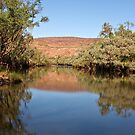 Fitzroy River ~ Mornington by Robert Elliott