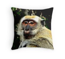 Next inline for American Idol Throw Pillow