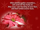 Christmas Card - Red and White Poinsettia by MotherNature