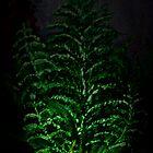Lighting plant by eartsteam